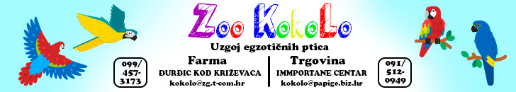 banner_zoo_1